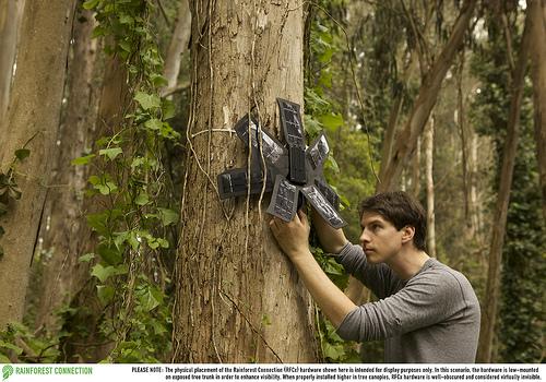 cellulari riciclati per combattere la deforestazione
