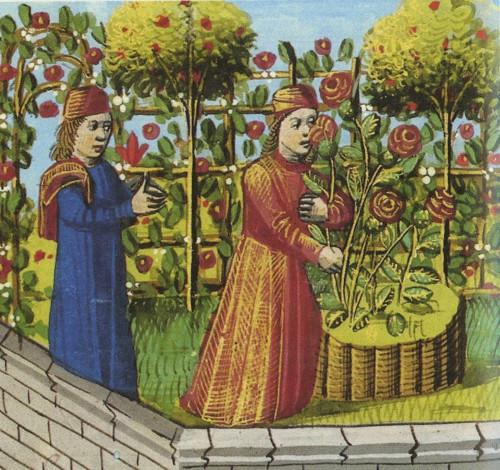 Giardino Medievale di Torino