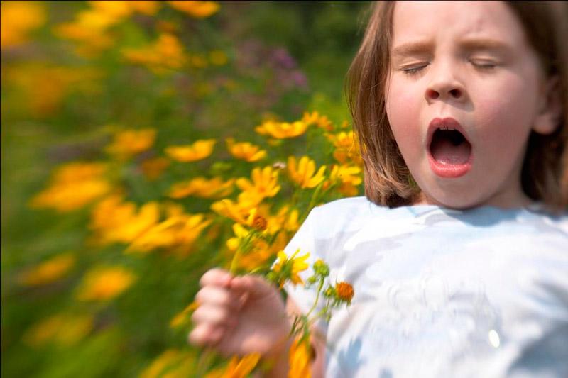 primavera-allergia