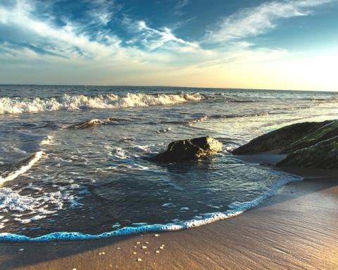 Tutelare gli oceani