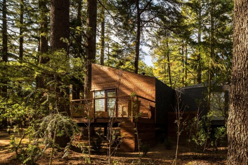 Eco-housing: case ecologiche