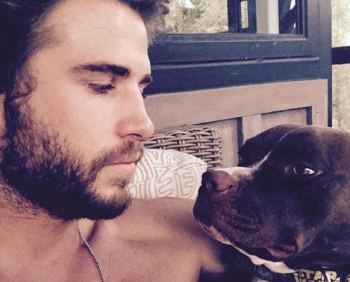 Liam-Hemsworth1