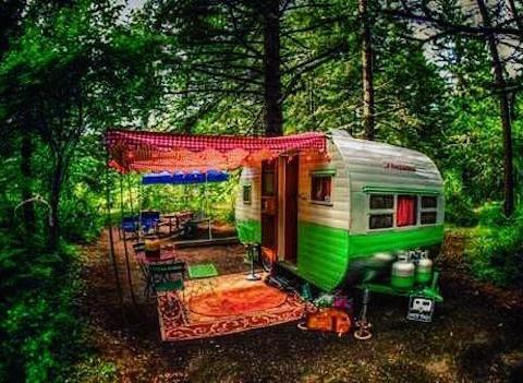 caravan-nel-bosco