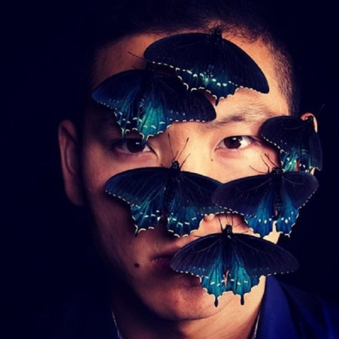 Tim Wong and his butterflies