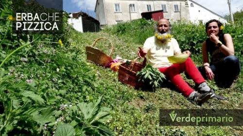erba-che-pizzica-1024x576