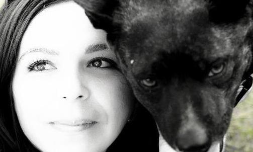 I volontari si occupano di recuperare e curare cani e gatti in difficoltà per farli adottare