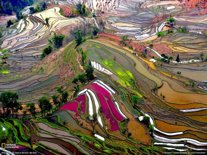 Long-Leng-China-Thierry-Bornier-NG-667x500.jpg