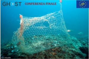 dall'archivio del progetto GHOST. A specimen of Corkwing wrasse swimming near a ghost net
