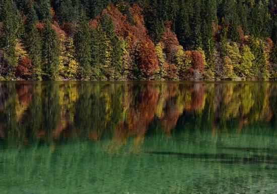 Foliage sul Lago di Tovel