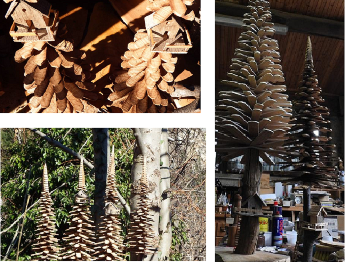 collage alberi paolo giraudo