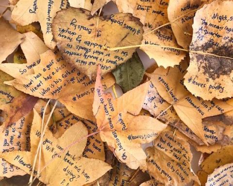 86-foglie-poesie