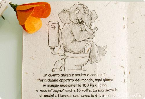 carta-in-cacca-di-elefante1