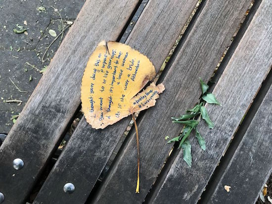 foglie-panchina