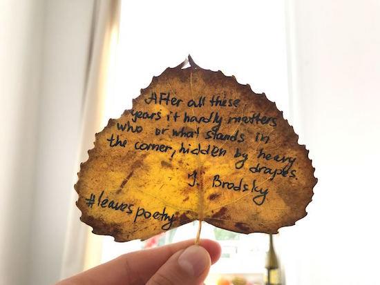 foglie-poesie-brodsky