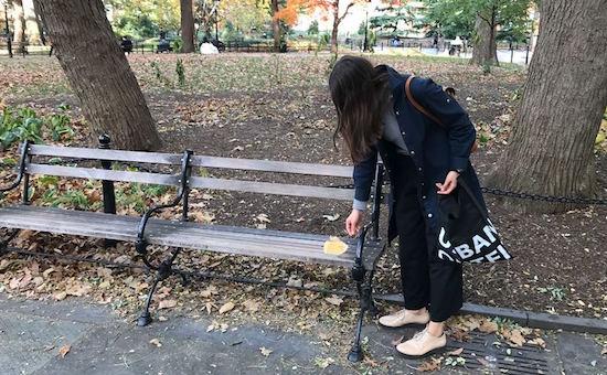foglie_elena-zaharova