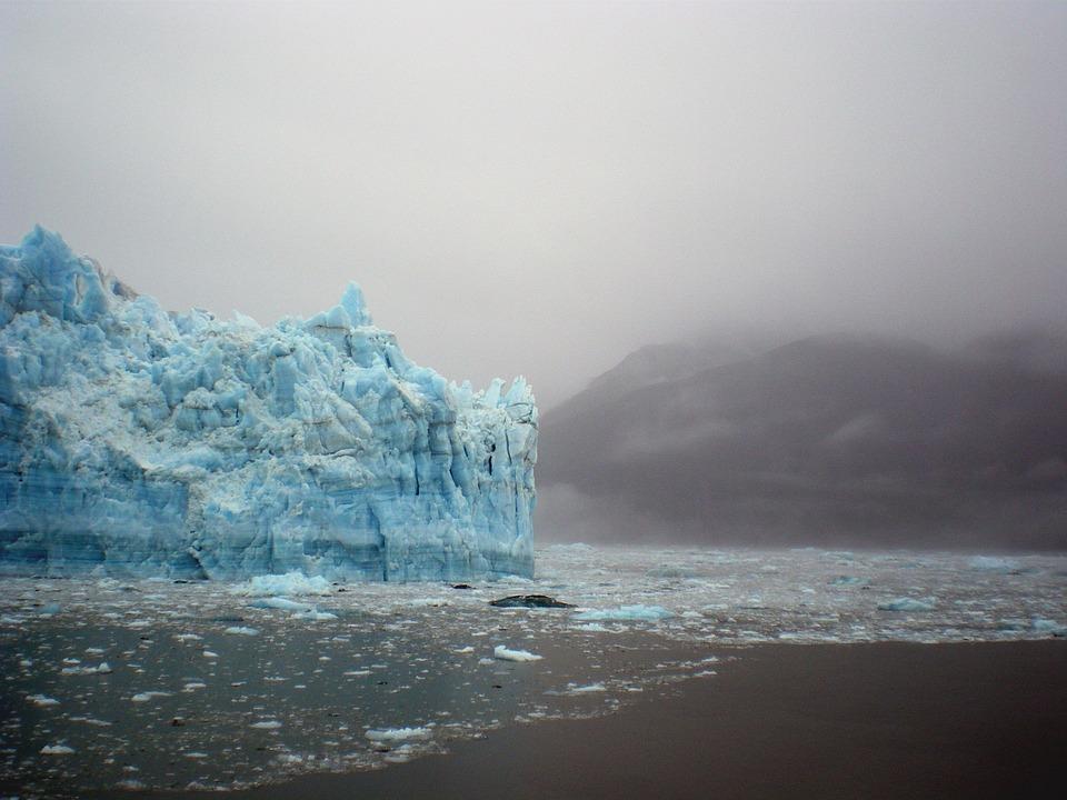 2016, ambiente, record negativi ma il cambiamento ha avuto inizio