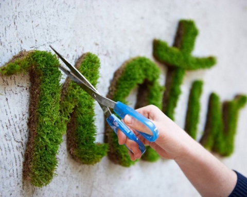 Moss-Graffiti-Natur- Anna Garforth