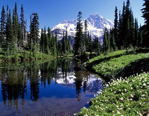aree naturali terrestri