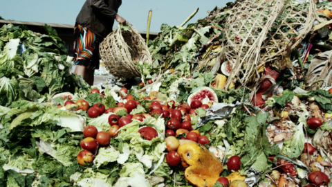 food-loss-and-waste