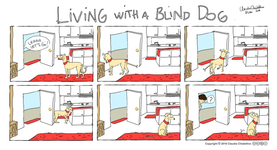 living-with-a-blind-dog-3-921x500.jpg
