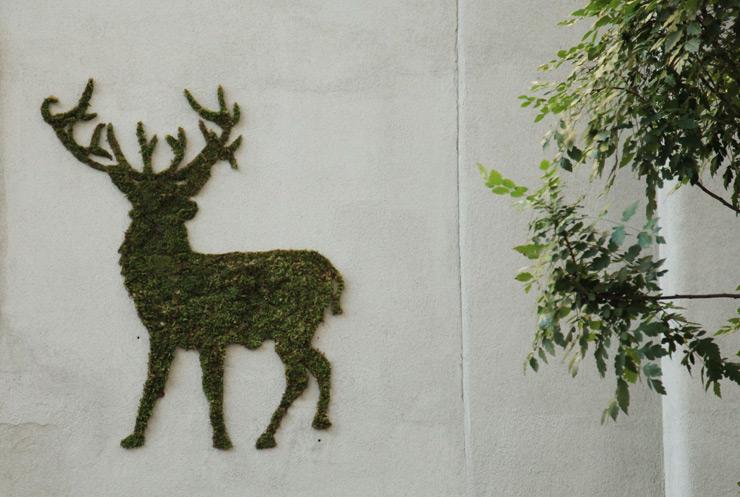moss graffiti jaime-rojo