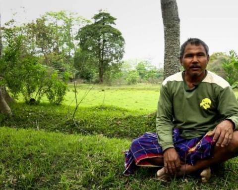 L'uomo che pianta gli alberi, Jaday Molai Payeng (Fonte foto: dorsogna.blogspot.it)