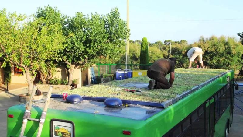 Bus con giardino