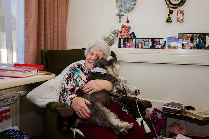 cani-lavoratori-andrew-fladeboe- pet therapy
