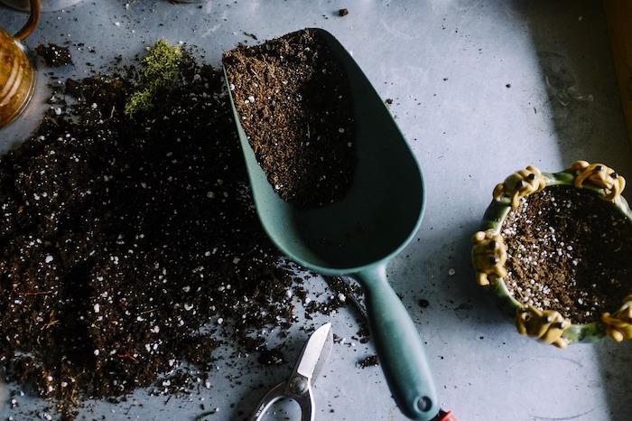 fondi di caffè giardinaggio