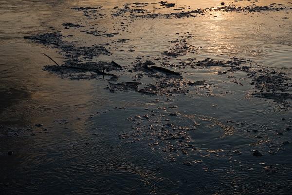 La piena del Po e le acque inquinate. Foto di D.Zappi