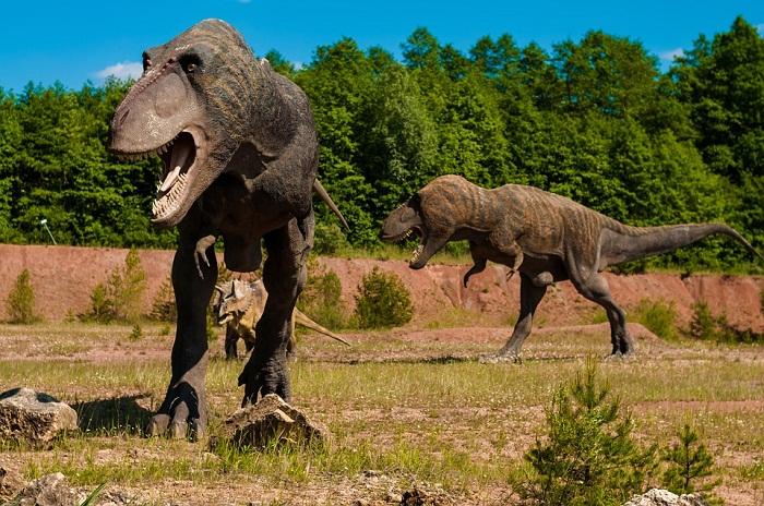 Dinosauro-