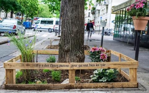 immagine lareleveetlapeste.fr