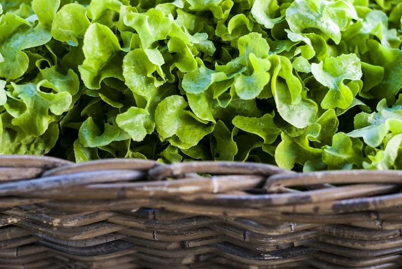 maggiore attenzione all'ambiente e maggiore attenzione alla provenienza di ciò che mangiamo