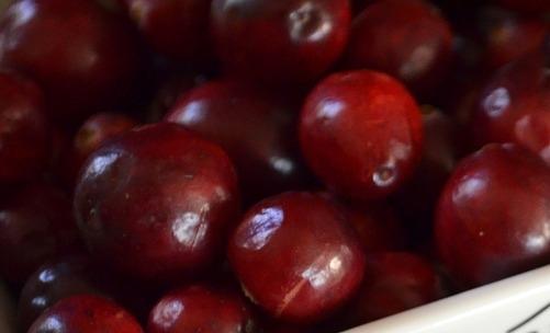 Cistite: il mirtillo rosso aiuta a prevenirla grazie alla sua efficacia diuretica