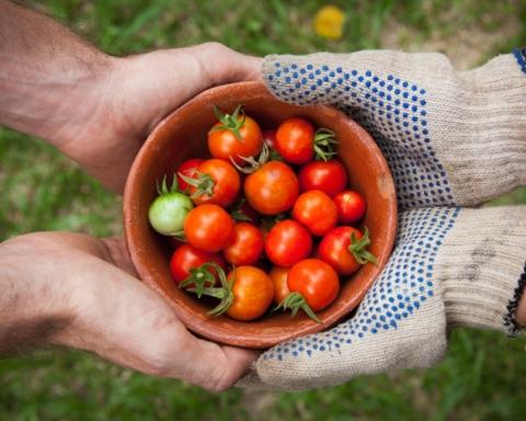 social street pomodori