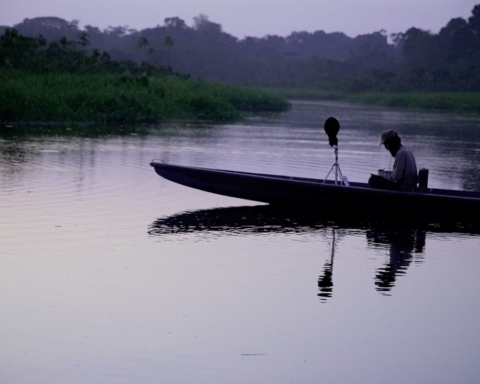 Dusk Chorus, il suono dell'Amazzonia a CinemAmbiente 2017