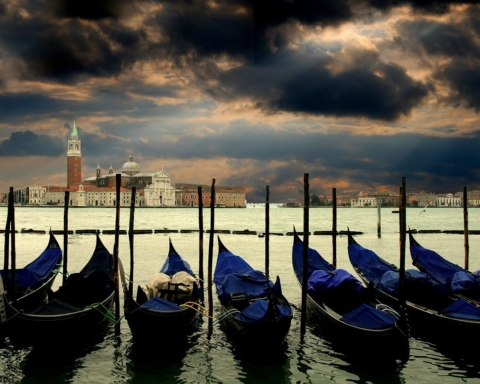 """""""paline"""" e gondole ormeggiate in Bacino San Marco"""