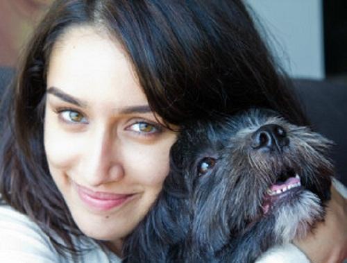 Shraddha-Kapoor-animali