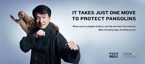 Jackie Chan per la campagna contro l'uccisione dei pangolini