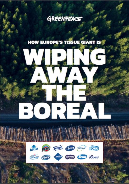 foreste report greenpeace
