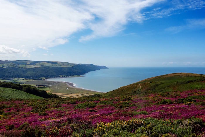 South-West-Coast-Path_-Bossington-Hill.jpg