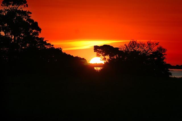 land grabbing in Amazzonia