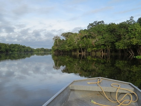 amazzonia