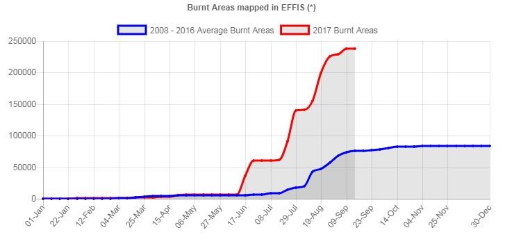 Nel grafico EFFIS - Copernicus il trend dell'area di bosco bruciata in Portogallo nel 2017 (linea rossa) a confronto con la media annua del periodo 2008-2016 (linea blu)