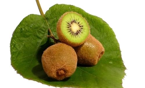 Kiwi: è un alimento potenzialmente allergizzante e ricco di ossalati di calcio.