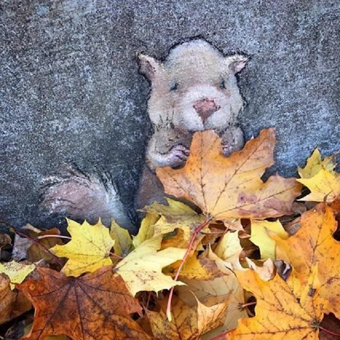 Street Art: scoiattolino si nasconde tra le foglie - Photo: David Zinn