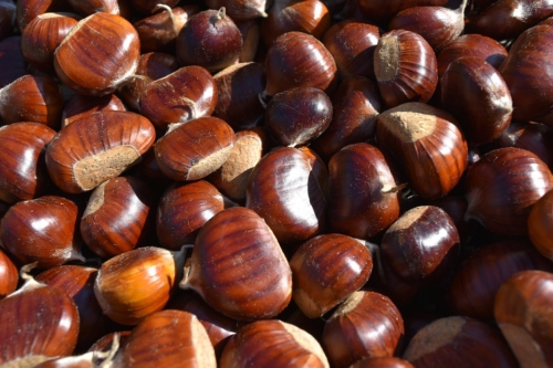 chestnuts-2831271_960_720