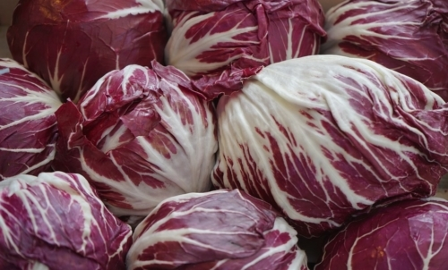 Radicchio: è un ortaggio invernale e ricco di proprietà benefiche.