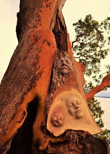 Tre generazioni scolpite sul tronco di un albero