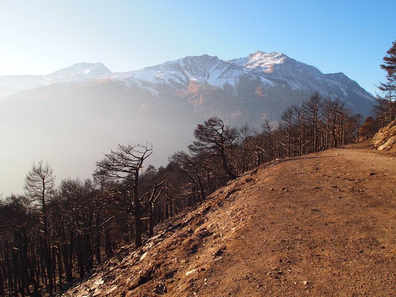 Incendi boschi Valsusa ottobre 2017 (13)-min